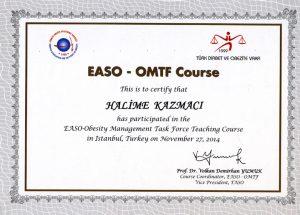Halime Kazmacı EASO-Obesity